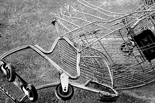 Shopping Cart Misshap Wiedmaier